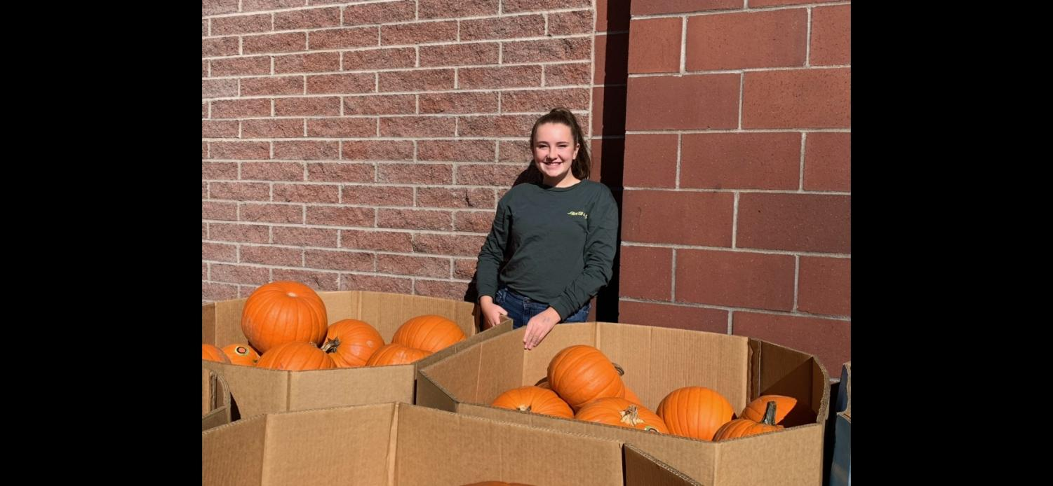Sofie Schindler picked out the pumpkins from Broulims.