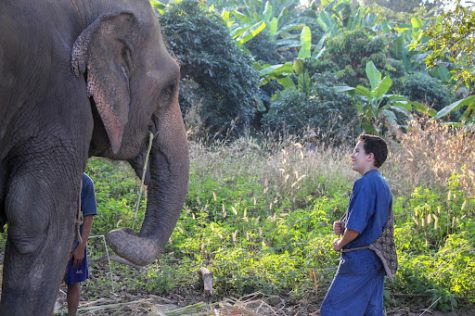 Hammond with an asiatic elephant. This species of elephant is found throughout all of Thailand and is revered and worshipped in Thai culture. One of the nicknames for Thailand is, 'The Kingdom of Elephants'.